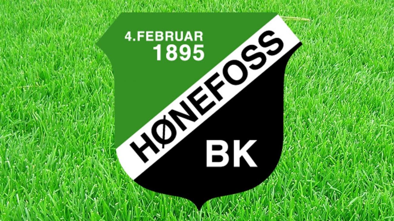Hønefoss logo oppe