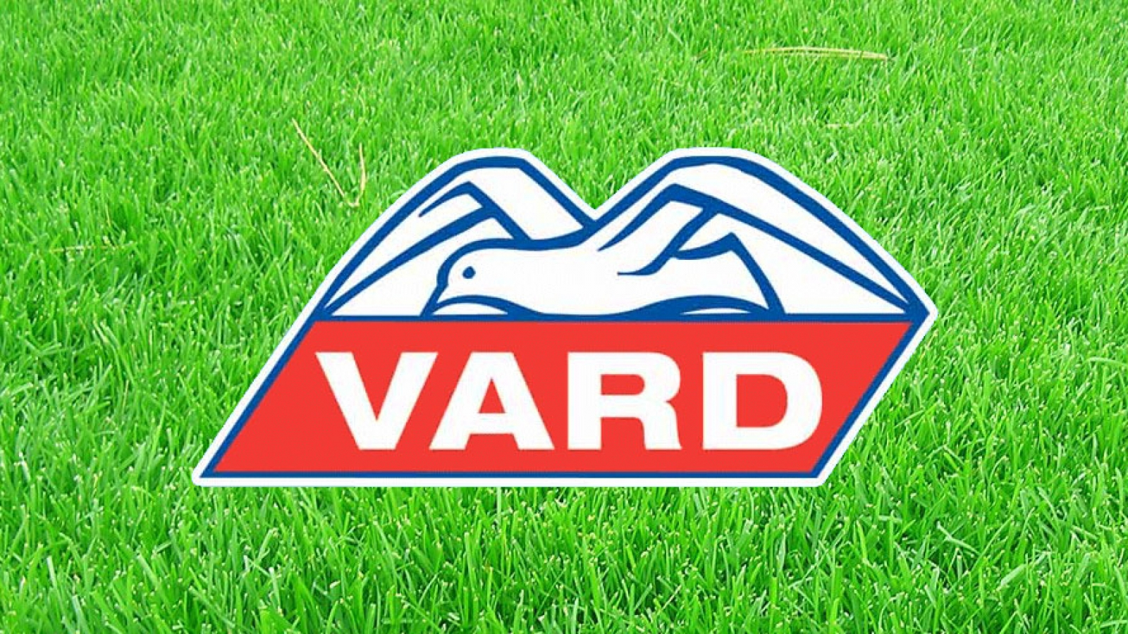 logo vard